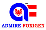 Admire Foxigen IT Solutions Pvt Ltd